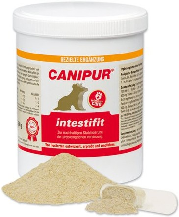 Canipur intestifit